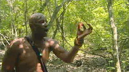 Phillip Sheppard, Survivor: Redemption Island